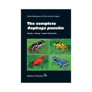 The-complete-Oophaga-pumilio