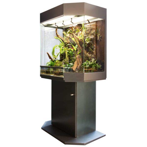 rana-terrarienbau-orchideenterrarium-gross