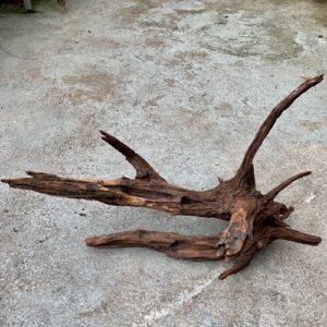 driftwood groß